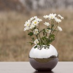 Sfera Urnen, Abschiedszeremonie Blumen